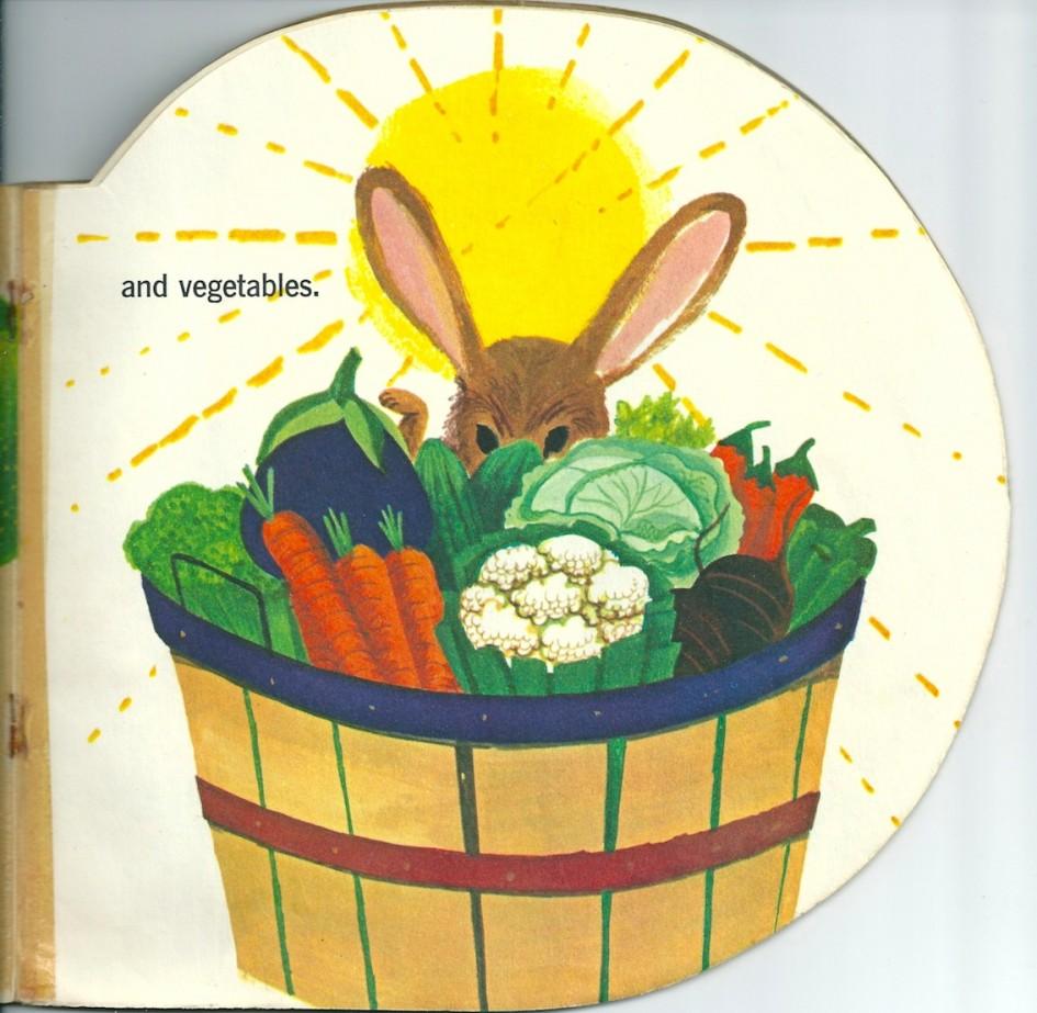 The Sunshine Book, Helen Federico